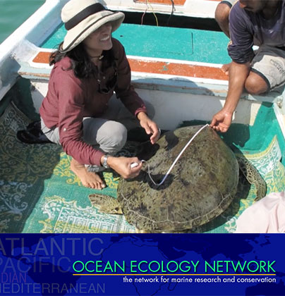 Ocean Ecology Network